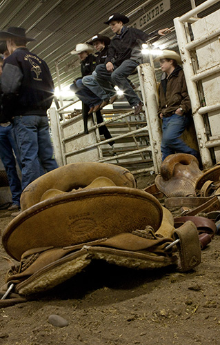 rodeo training calgery